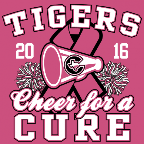 Tiger Cheer Clinic