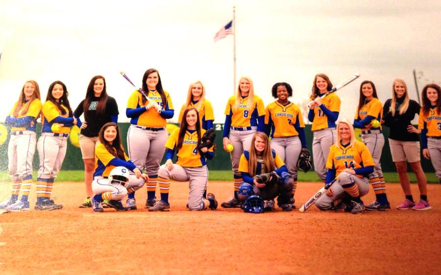 2015 Tiger Softball Team